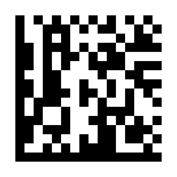 Exemple de format de code à barres DataMatrix par ga-international.com