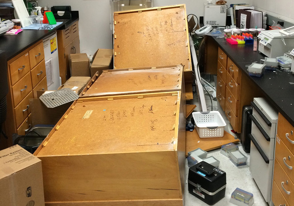 collapsed cabinets, in the lab