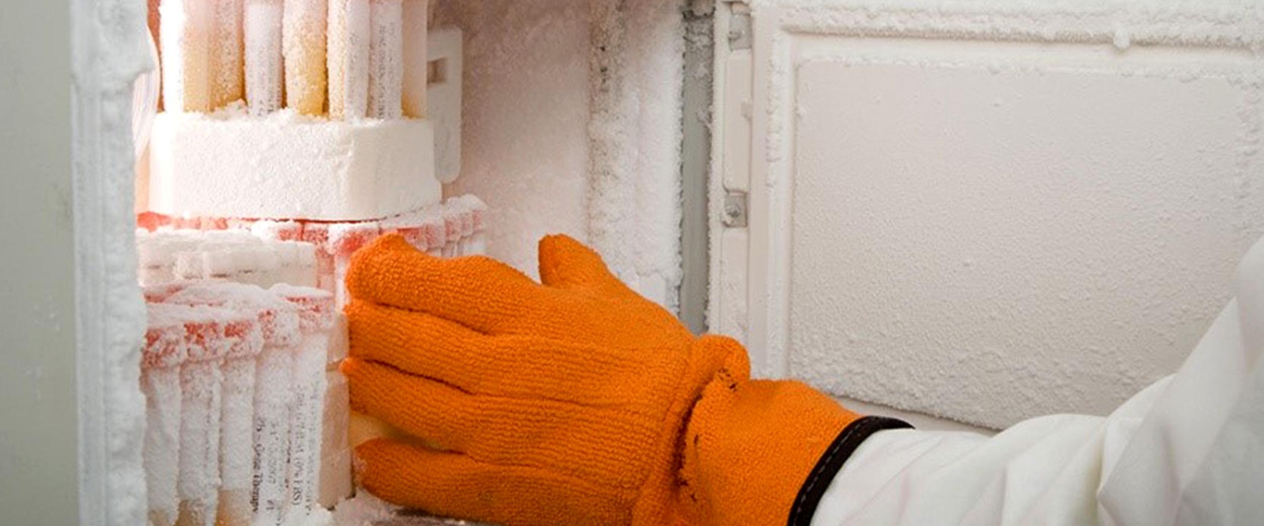 Freezer Inventory Management