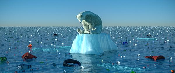 Climate Change Awareness  - Polar Bear on ice cap
