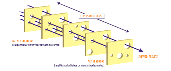 Swiss Cheese model for the lab