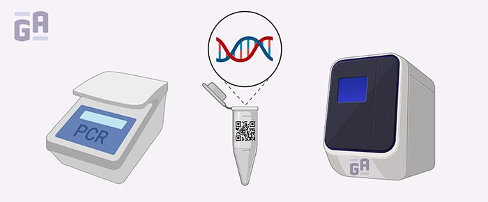 Avoiding PCR Errors